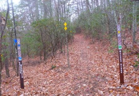 Lower Junction of Bracken Mountain Trail and Mackey Ridge Trail