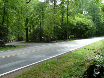 Coontree (Coon Tree) Parking Area along Highway 276 in Pisgah Forest