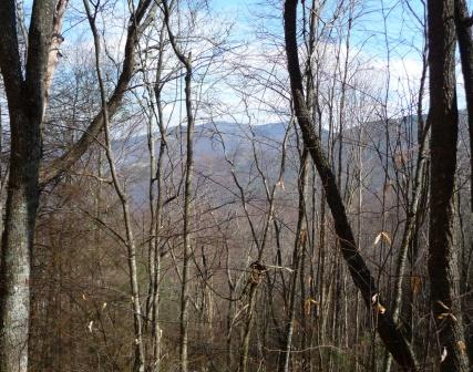 View of Cold Mountain and Deep Gap, as seen from logging road that climbs up Cathy's Ridge
