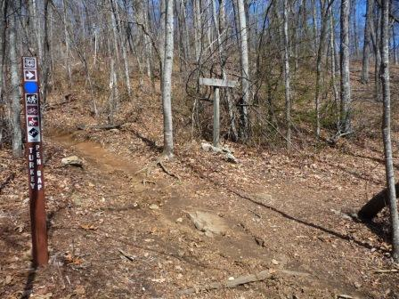 Juncture of Black Mountain and Turkey Pen Gap Trails